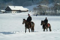 Sleigh rides and winter horseback riding